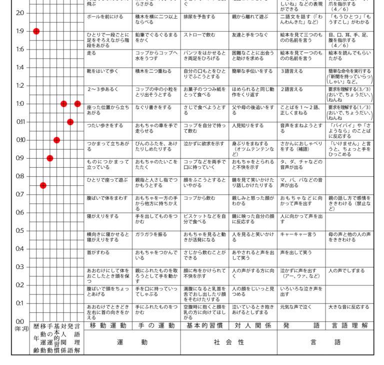 的 検査 式 乳幼児 発達 分析 円城寺