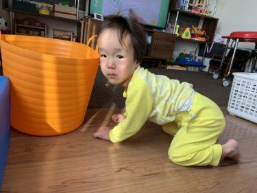 ソトス症候群の息子の発達状況(1歳10ヶ月)
