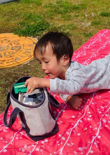 【どうぞ/ちょうだい】と【モノを箱に入れる】をマスター!1歳11ヶ月で急激に賢くなってきた